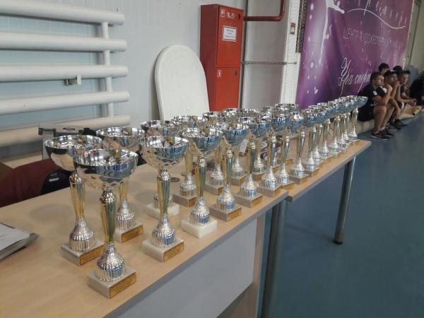 В  Гусеве прошел Кубок Калининградской области по смешанному боевому единоборству ММА 2017