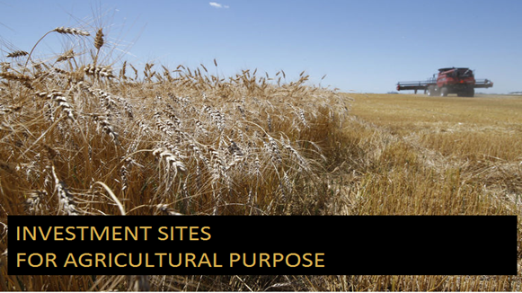 Investment sites for agricultural purpose